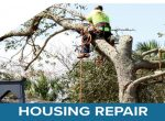 RebuildFlorida logo with a photo of a technician in a tree